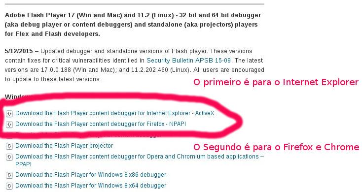 FLASH-instalacao_dicas-3